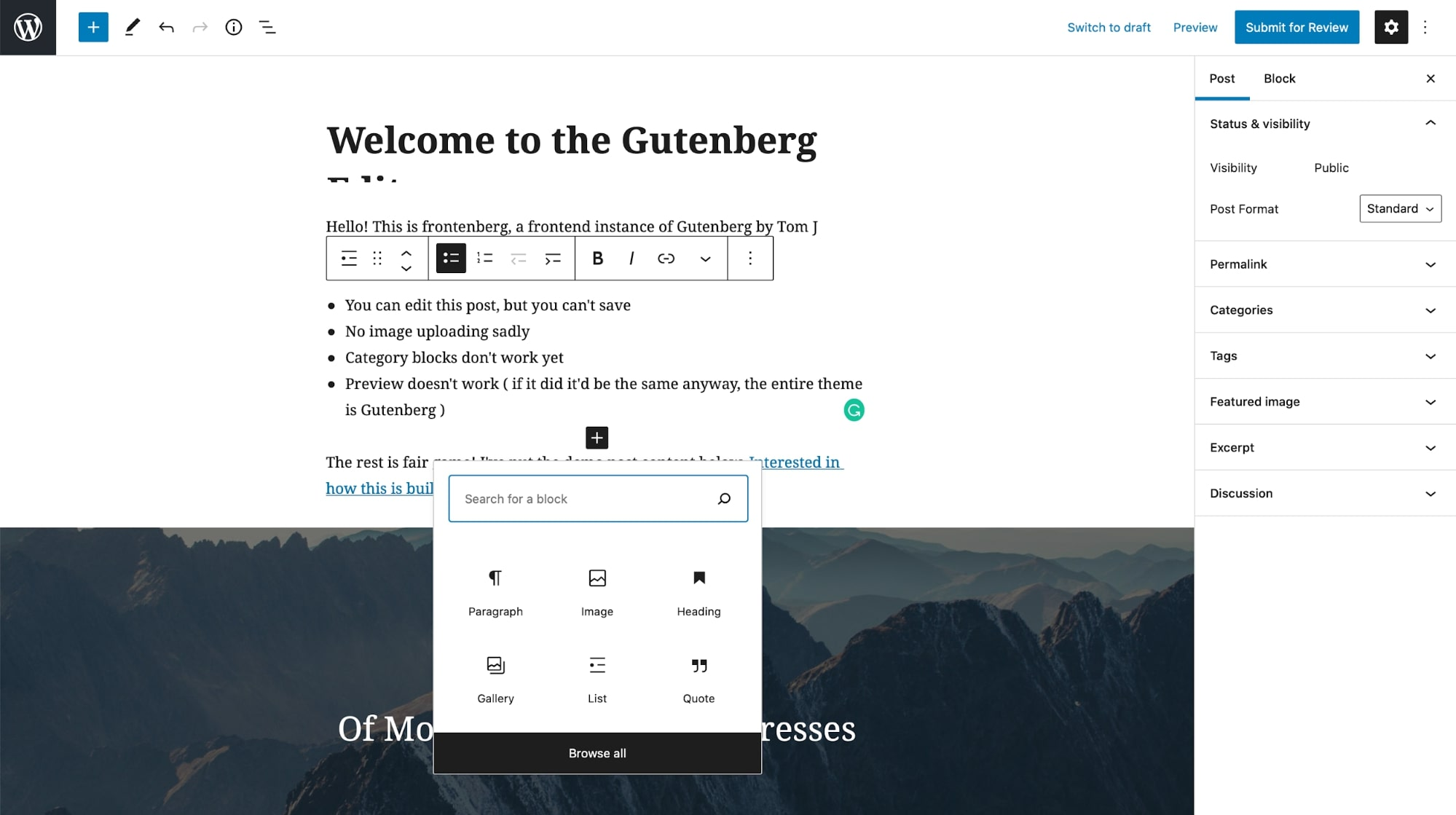 Gutenberg editor interface