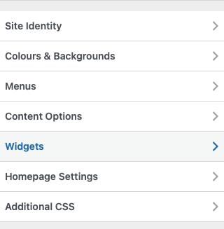 WP Customizer menu